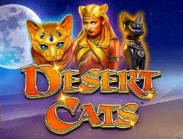 desert-cats